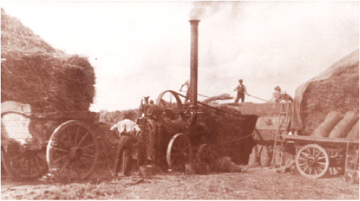 Steam powered threshing at East Hanney circa 1903.
